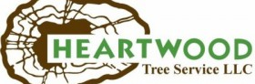Heartwood Tree Service Preserves the Queen City's Crown Jewels