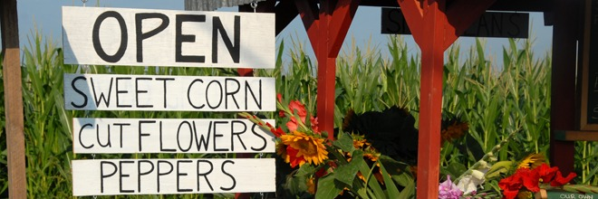Go Farm-to-Fork For National Farmers Market Week