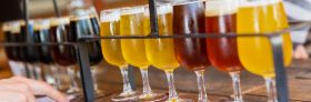 Celebrate American Craft Beer Week with Local Breweries