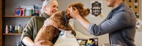 3 Reasons to Choose Local for Your Best Friend