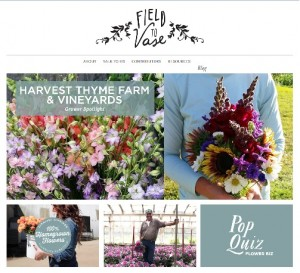 Field to Vase homepage