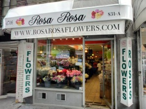 rosarosa_FAcebook